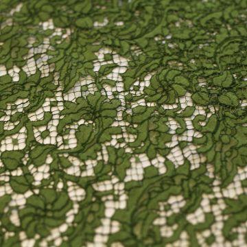 ф3375 Кордовое кружево с кудрявыми калачами цв Ранняя оливка